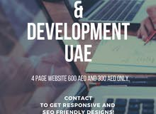 web development for 300 AED