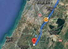 أرض للبيع بنواحي الدار البيضاء