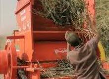 عمال دقاقة فول سوداني