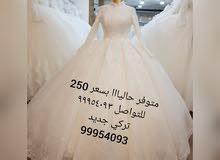 فساتين زفاف تركية جديده بسعر 250