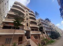 شقة 110 متر طابق اول واجهه بحري بالتقسيط في شاطئ النخيل العجمي