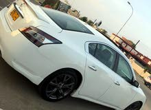 White Nissan Maxima 2013 for sale