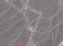 للبيع ارض في ولاية صحم ديل ال عبدالسلام