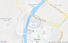 محافظة القليوبية - بنها- منطقة الفلل - خلف محكمة الاسرة