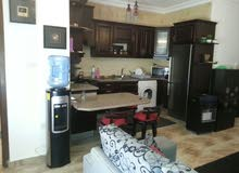 Best price 75 sqm apartment for rent in Amman7th Circle