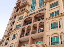 Affordable 1 bedroom apartment for rent in dubai