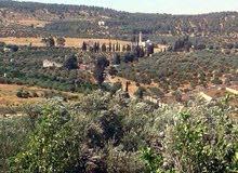 ارض 4712متر على الطريق العام عمان - جرش المصطبه