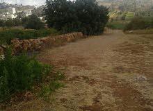 ارض مطله ومرتفعه منطقة بلدة عبين/عجلون/منطقة ابو بهلول