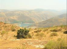 ارض مطلة على سد الملك طلال 5000م -جرش