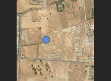 قطعة ارض بقصر بن غشير مساحتها 650م