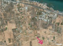 ارض للبيع في تاجوراء