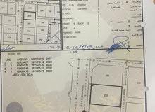 الموالح العاشره قريب عيادة أحمد