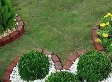 تصاميم حديثه وزراعه الاشجارولورود