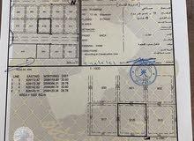 ارض صناعية في المسفاه / بوشر