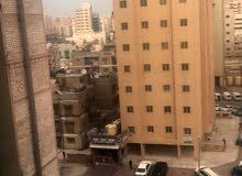 مطلوب عدد 3 شباب مصريين لمشاركة سكن بجوار الريف المصري