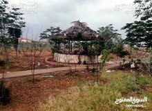 مزرعة للبيع في بلعما خلف سلطة المياه فيها بيت ريفي