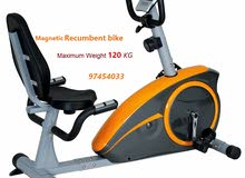 Recumbent Magnetic Bike