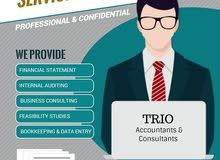 خدمات مالية ومحاسبية, التدقيق, دراسات الجدوى, امساك الدفاتر