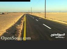 300م بوادي الربيع النعم قطران 12 ألف