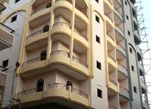 apartment is up for sale Shebin al-Koum