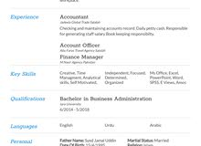 looking for Accountant Job