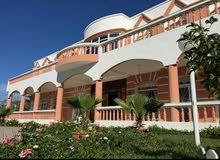 قصر همزة