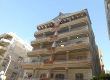 شقة بشاطئ النخيل (6 اكتوبر) شارع 8 _دقائق من الشارع الرئيسى , المطاعم