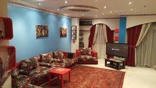 شقة مفروشة 285م اول سكن للايجار بمنطقة راقية وشارع رئيسي من مكرم عبيد