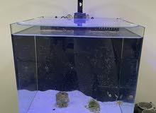 nano Marine aquarium for sale