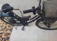 دراجة كهربائية 48فولت