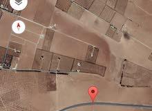 للبيع ارض 10 دونم في جلول بئر البيت