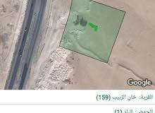 للبيع ارض 10 دونم في خان الزبيب الطريق الدولي