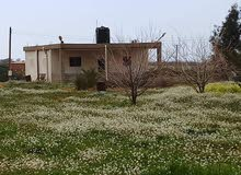 مزرعه 2هكتار للبيع فى بوترابه موقع ممتاز يوجد بها منزلين و3ابار واشجار مثمره