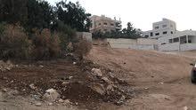 ارض للبيع  بسعر مغري جدا لسرعه البيع  محافظة الزرقاء  منطقة جريبا