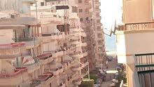 شقة بالرووف 250 متر / ترى البحر (شارع 6)