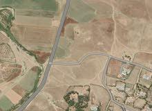 بيع اراضي الافوكادو