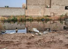 قطعتان زراعيه ابي الخصيب حمدان مجاور محطه المياه قبل الجسر
