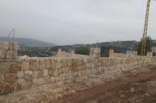 ارض 500 متر للبيع في الدورة عكار  معمرة بحجر قاصوفي  السعر قابل للنقاش  الارض في منطقة طبيعية خلابة