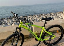 if you looken for rental bike job you will find it with us