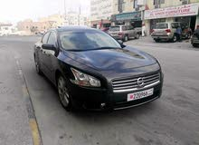 For sale Used Maxima - Automatic