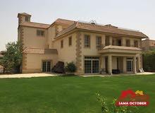 لمحب الفخامة قصر بالربوة الشيخ زايد