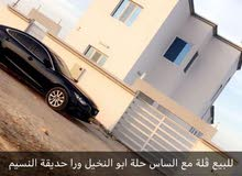 4 Bedrooms rooms Villa palace for sale in Barka