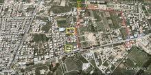 2 قطع ارض للبيع بمساحة 242 متر/مربع لكل قطعة - داخل المخطط المعتمد - السراج - حي المدرسة الدولية