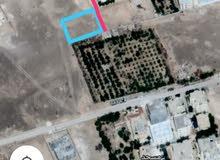 طريق اذرح الجهه المقابله للفيصل مول دونم 1,291 خلف مزرعته التلهوني