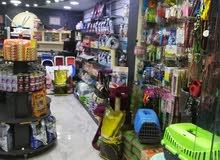أفتتاح عيادة بيطرية في  ابو نصير  للحيوانات الأليفة للأستفسار د. مهند 0788487222