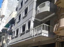 شقة تمليك بشارع منفيس كامب شيزار للتمليك.