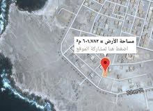 مرباط منطقة زهير ثاني صفة من البحر