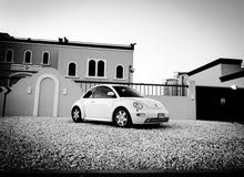 Volkswagen Beetle in Sharjah