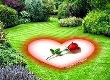 اطلب عمل زرع و تنسيق حدائق مشاريع من الباطن