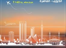 شركة عالم الراية توفر للجالية المصرية رحلات يومية على القاهرة ، سوهاج ، اسيوط